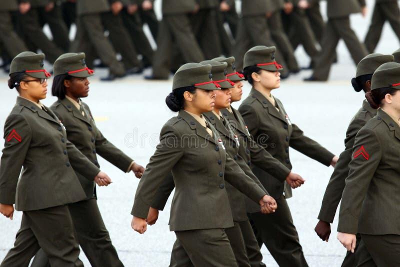 De Gediplomeerden van de Marine van Verenigde Staten in stap stock afbeelding