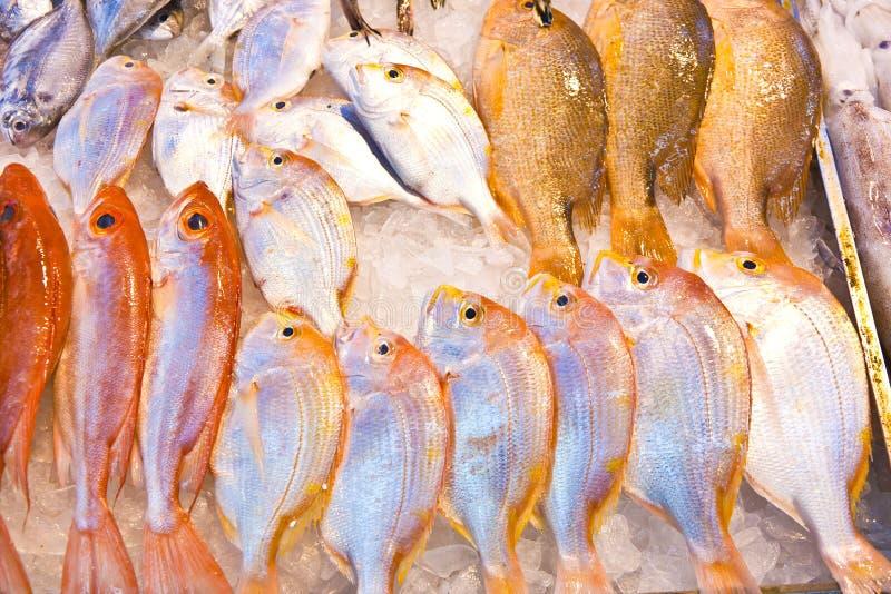 De gehele verse vissen worden aangeboden in de vissenmarkt stock foto