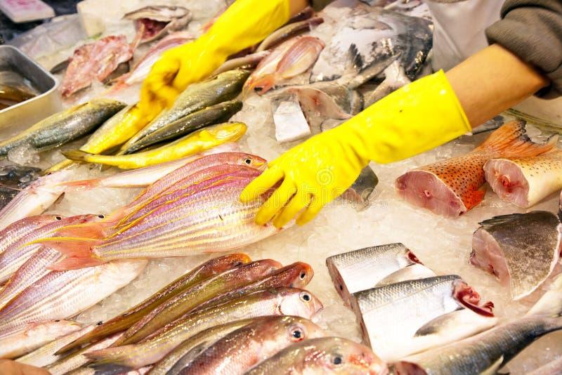 De gehele verse vissen worden aangeboden in de vissenmarkt in Azië royalty-vrije stock foto