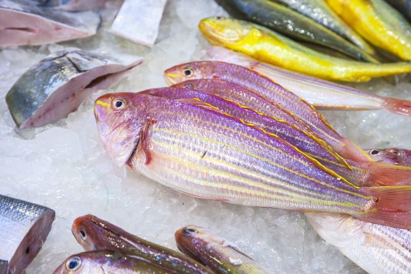 De gehele verse vissen worden aangeboden in de vissen marke royalty-vrije stock foto