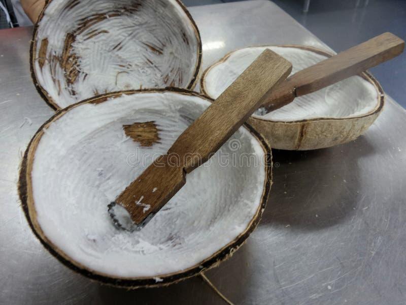 De gehouden hand van de de ontvezelmachineschraper van de kokosnotenrasp - stock foto