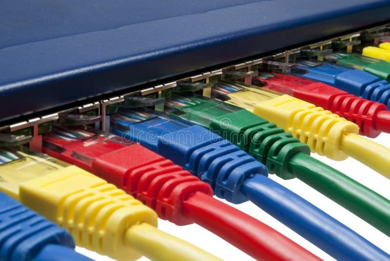 De gekleurde netwerkstoppen verbonden met router/schakelaar stock foto