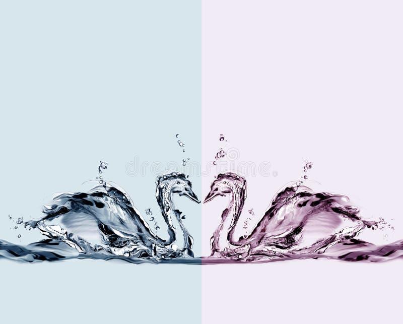 De gekleurde Zwanen van het Water in Liefde stock afbeelding