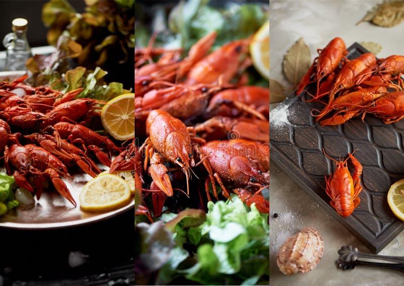 De gekookte rivierkreeften liggen op een schotel Zeevruchten Voedzaam en gezond diner collage royalty-vrije stock foto's
