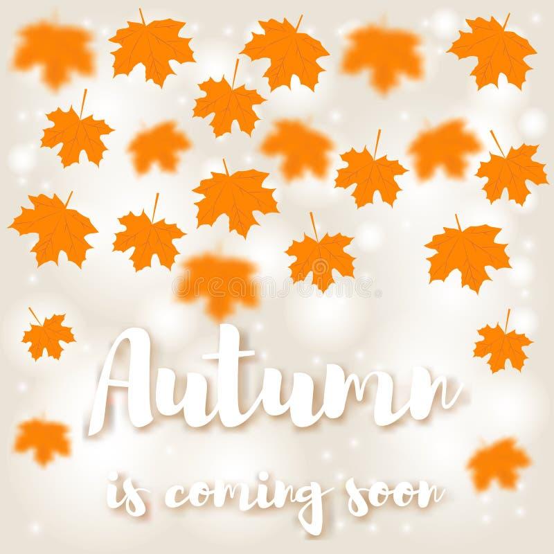 De gele bladeren van de de herfstesdoorn vliegen De inschrijvingsherfst komt royalty-vrije illustratie