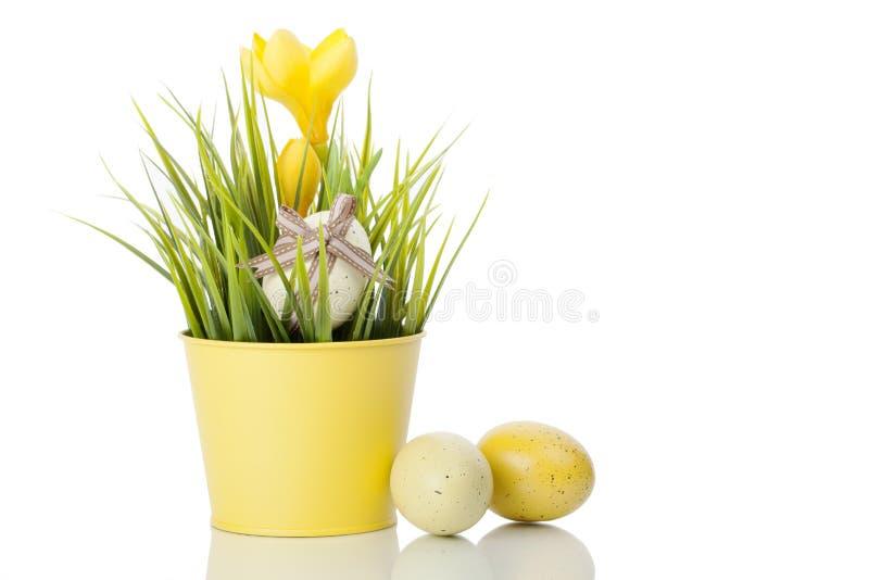Download De Gele Bloem Van De Krokus In Pot Met Eieren Stock Afbeelding - Afbeelding bestaande uit kaart, land: 29504989