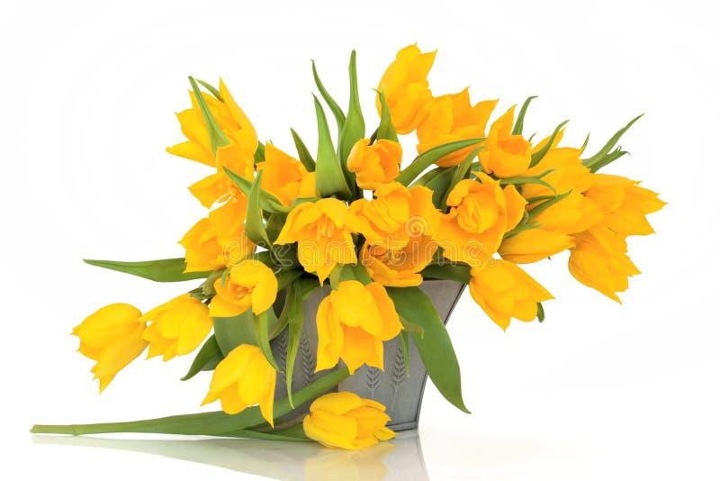 De gele Bloemen van de Tulp royalty-vrije stock afbeeldingen