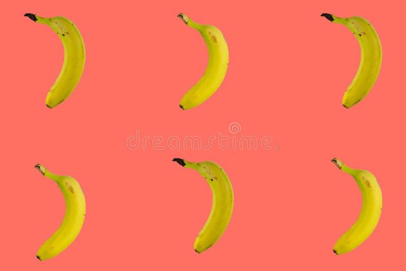 De gele die bananen op in het leven koraal worden geïsoleerd kleurt achtergrond, conceptueel beeld in minimaal ontwerp Tropische  stock foto