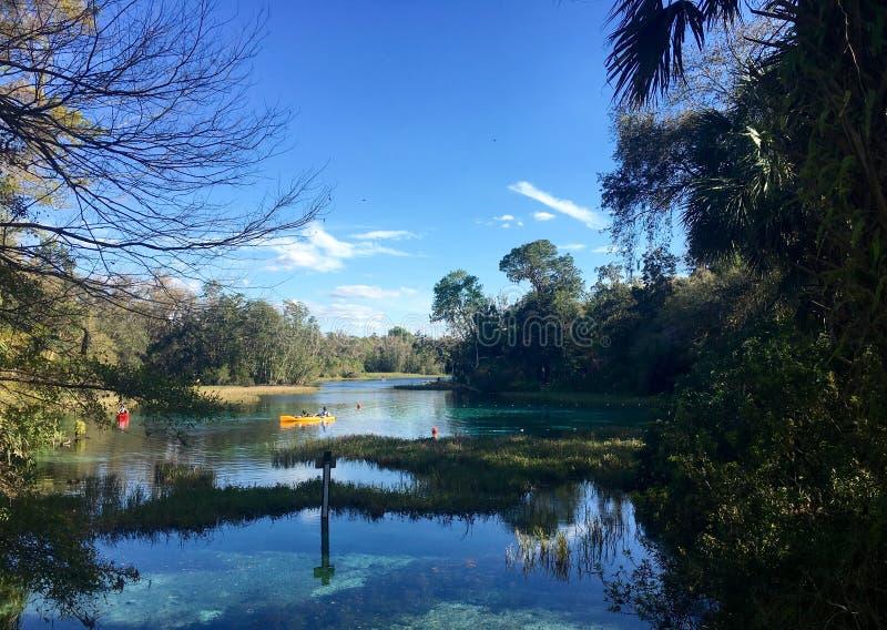 De gele lente naast gainesviille Florida royalty-vrije stock afbeelding