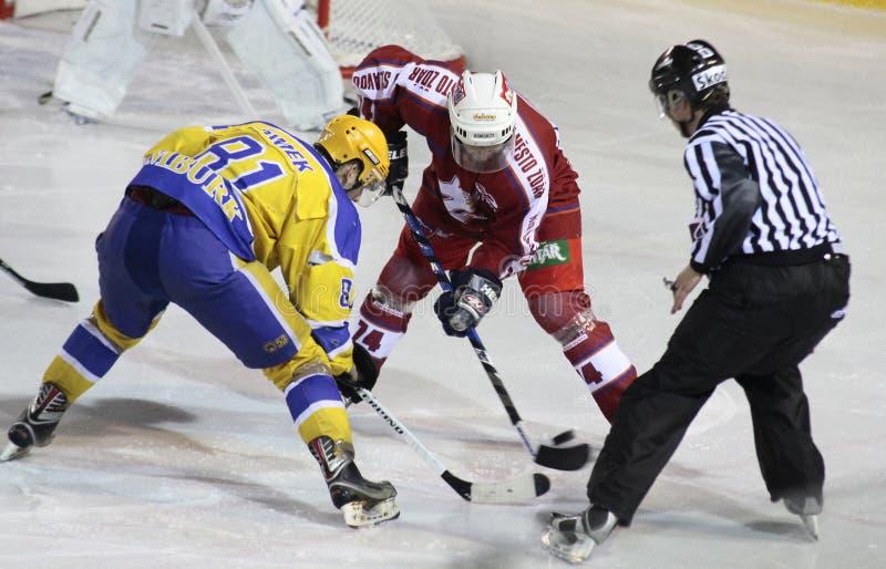 De gelijke van het ijshockey royalty-vrije stock foto