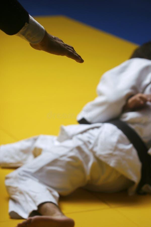 De gelijke van het judo stock fotografie