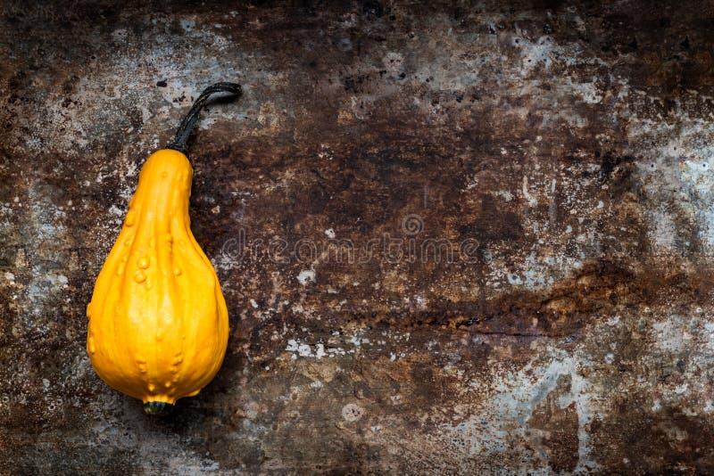 De gelukkige Achtergrond van de Dankzegging Oranje pompoen op rustieke metaalachtergrond met exemplaarruimte Autumn Harvest stock foto