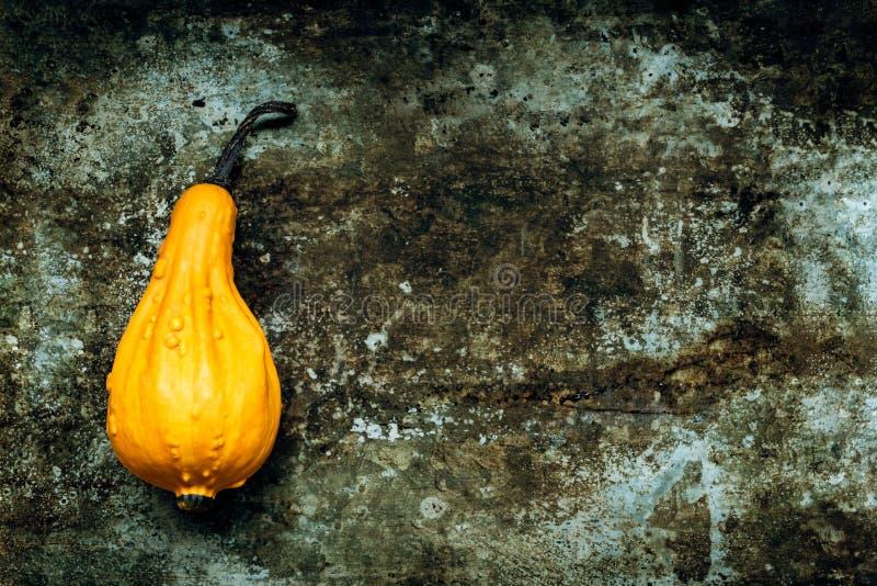 De gelukkige Achtergrond van de Dankzegging Oranje pompoen op rustieke metaalachtergrond met exemplaarruimte Autumn Harvest stock afbeelding