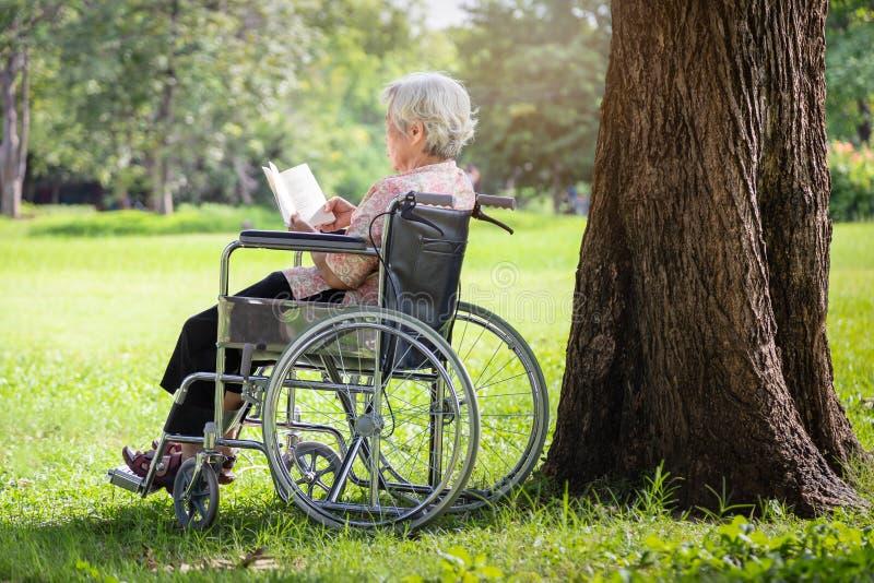 De gelukkige Aziatische hogere vrouw die die een boek lezen in de ochtend in groene aard, dichtbij de grote boom wordt ontspannen stock foto's