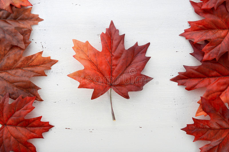 De gelukkige bladeren van de de Dag rode zijde van Canada in vorm van Canadese Vlag royalty-vrije stock afbeeldingen