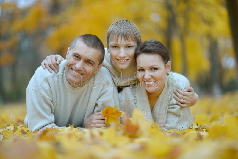 De gelukkige familie van Nice stock fotografie
