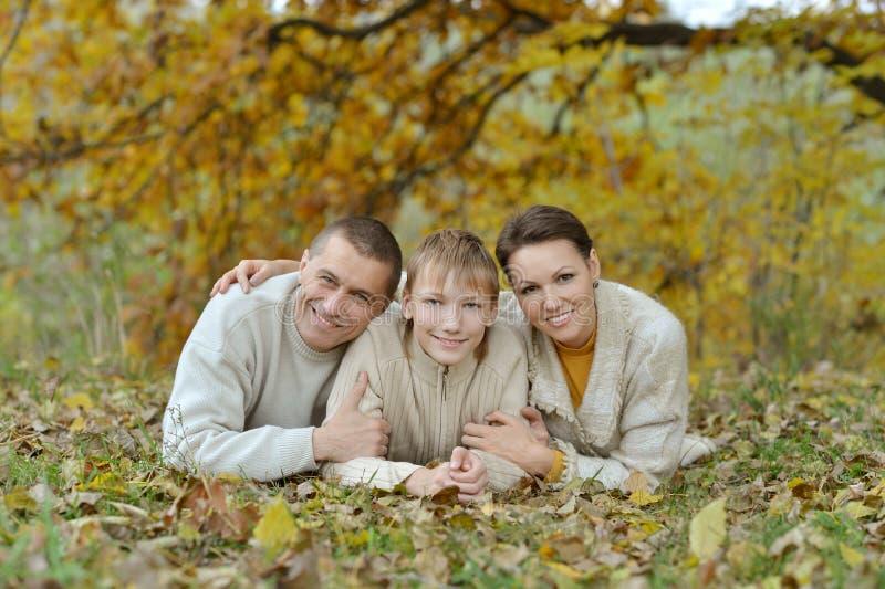 De gelukkige familie van Nice stock afbeelding