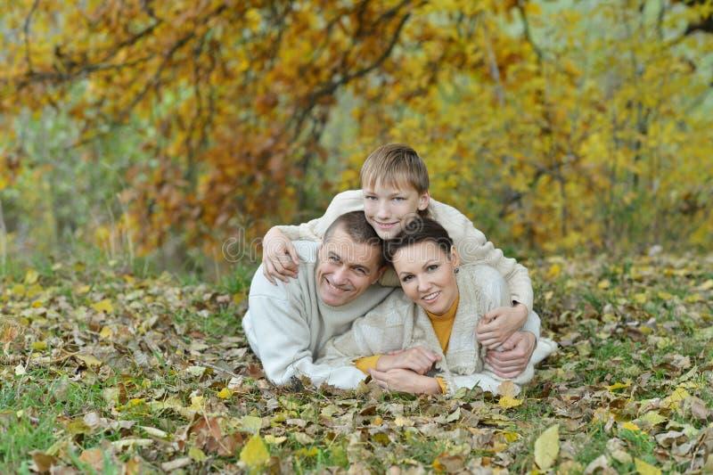 De gelukkige familie van Nice stock foto