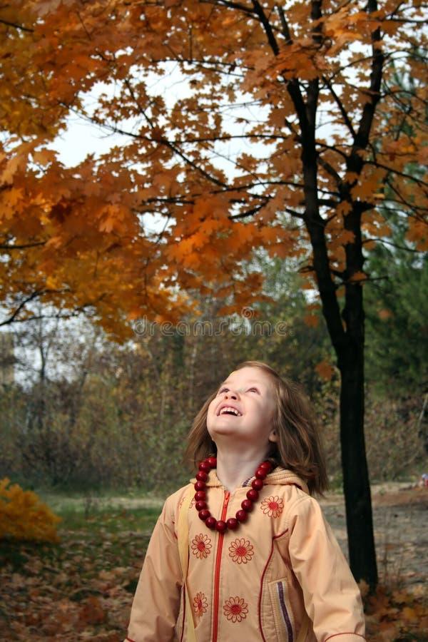 De gelukkige herfst royalty-vrije stock afbeelding