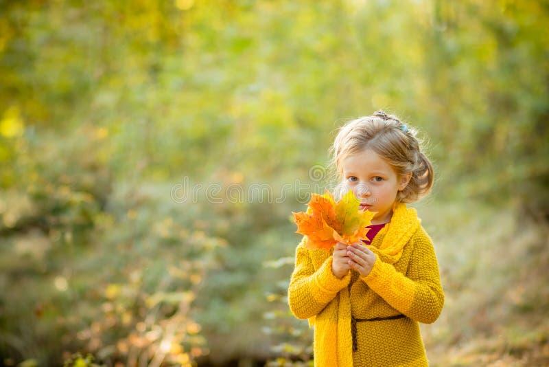De gelukkige Herfst Een klein meisje in ayellowlaag speelt met dalende bladeren Hello-de herfstconcept Jonge geitjesspel in openl stock afbeeldingen
