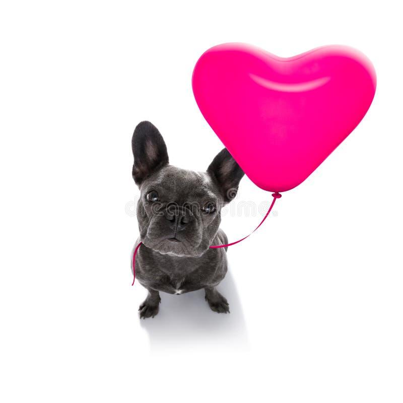 De gelukkige honden van verjaardagsvaleintines stock afbeeldingen