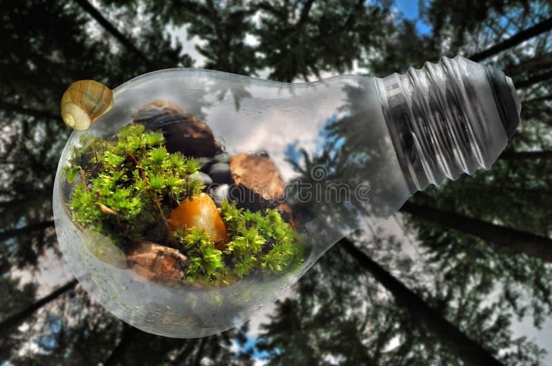 De gelukkige illustratie van de Aardedag met bosachtergrond stock foto