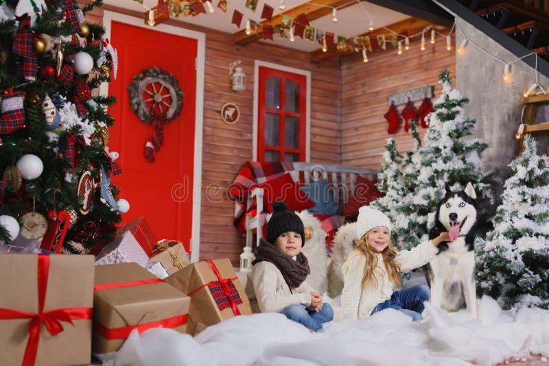 De gelukkige kinderen liggen op vloer dichtbij Kerstboom en omhelzen hond Zij bekijken camera en het glimlachen stock afbeelding