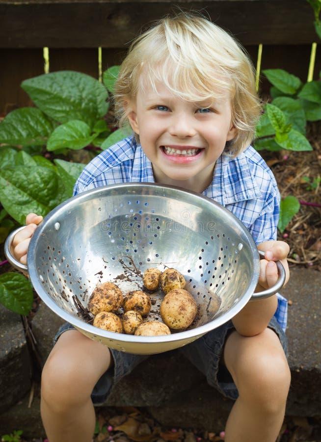 De gelukkige kom van de kindholding van organische aardappels stock foto