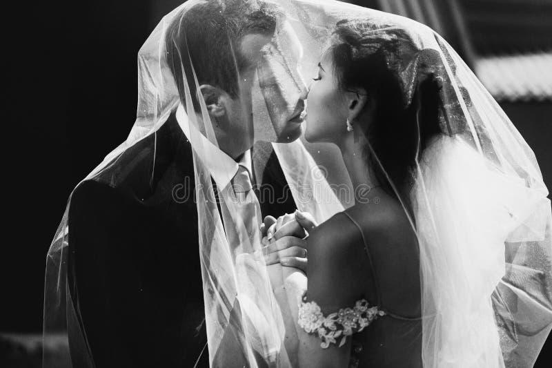 De gelukkige kussende bruid van het jonggehuwdepaar en knappe bruidegom onder vei stock afbeeldingen