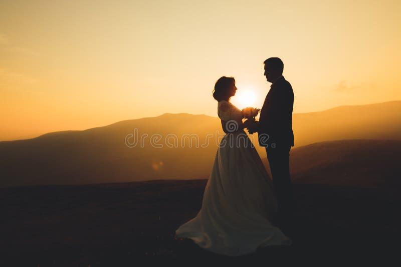 De gelukkige mooie bruid en de bruidegom van het huwelijkspaar bij huwelijksdag in openlucht op de bergen schommelen Gelukkig huw royalty-vrije stock foto's