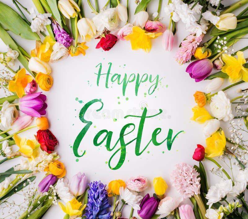 De gelukkige Pasen-uitdrukking en de de lentevlakte lagen royalty-vrije stock afbeelding