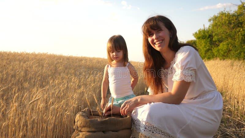 De gelukkige spelen van de moederlandbouwer met weinig zoon, dochter op het gebied de moeder en weinig kind spelen met korrel in  royalty-vrije stock fotografie