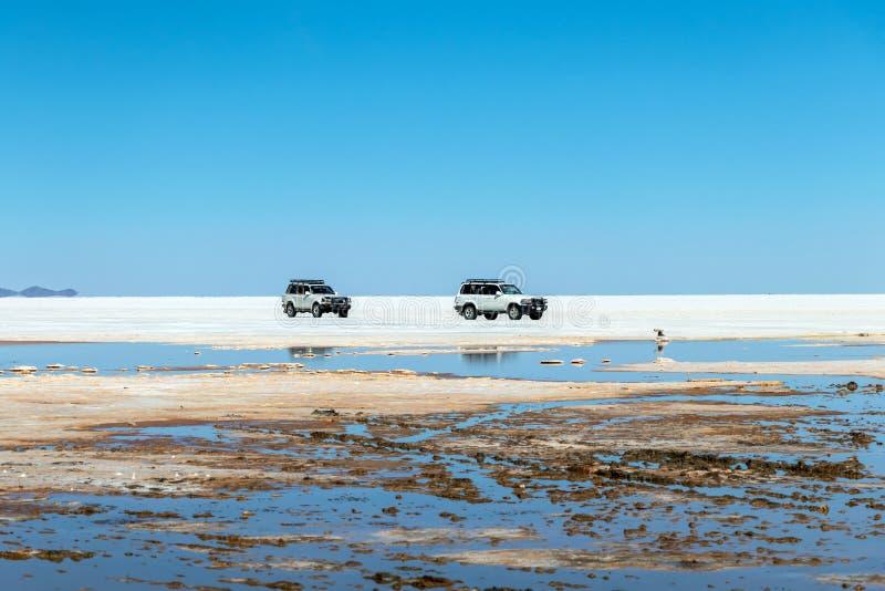 De gelukkige toeristen genieten van de activiteiten van de Jeepreis in Zoute vlakten Salar de Uyuni in Bolivië royalty-vrije stock foto