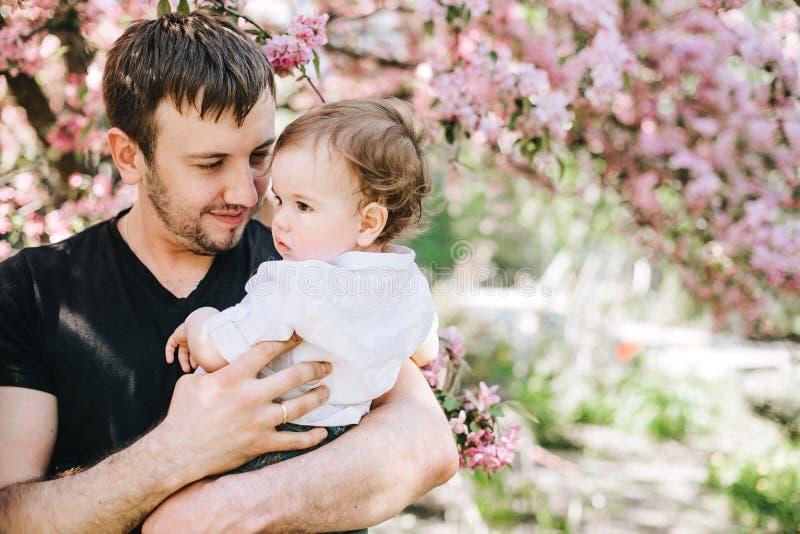 De gelukkige vader met zoon in zijn wapens die zich dichtbij de boom van kers bevinden komt tot bloei stock afbeelding
