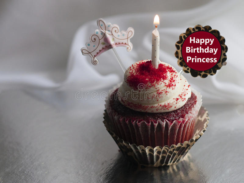De gelukkige viering van de Verjaardagsprinses cupcake royalty-vrije stock foto's