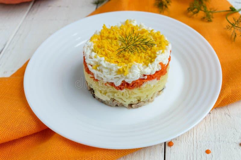 De gemakkelijke lagen van de Dieetsalade in de vorm van een cirkel & x28; tonijn in olie, gekookte aardappels, wortelen, eggs& x2 stock foto's
