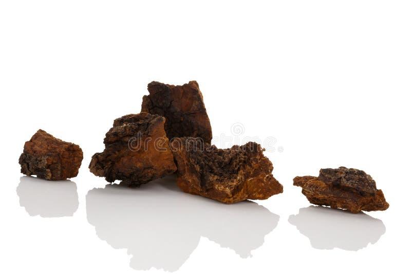 De geneeskrachtige stukken van de chagapaddestoel stock afbeeldingen