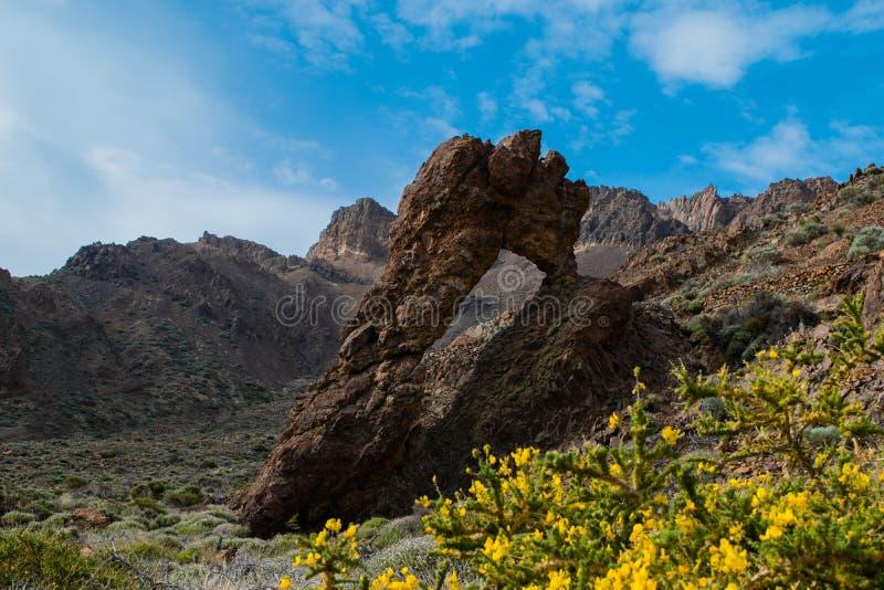 De geologische eigenschap noemde Koningin` s Schoen zapato DE La reina in het Nationale Park van Teide, Tenerife stock foto