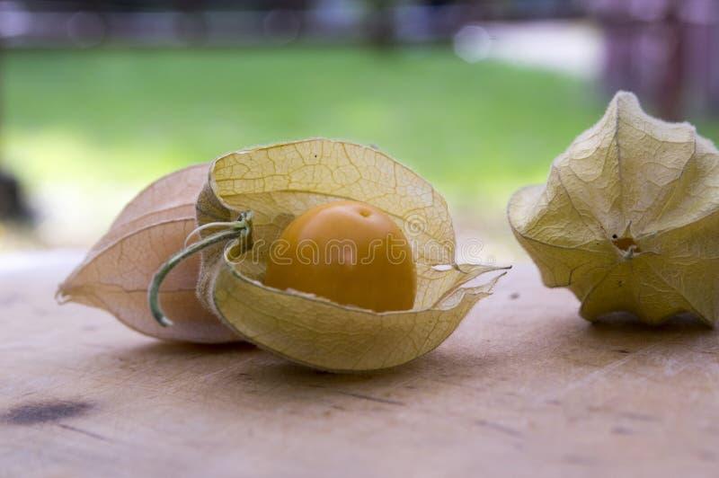 De gerijpte vruchten van Physalisperuviana sinaasappel in schil op houten lijst royalty-vrije stock fotografie