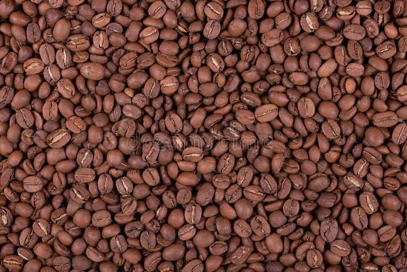 De de geroosterde arabica achtergrond of textuur van koffiebonen stock afbeeldingen