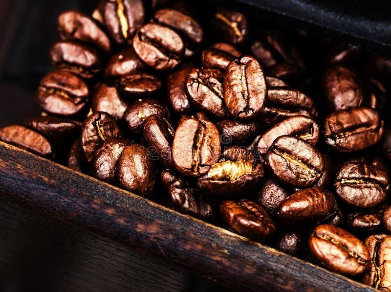 De geroosterde macro van koffiebonen in een houten doos stock afbeelding