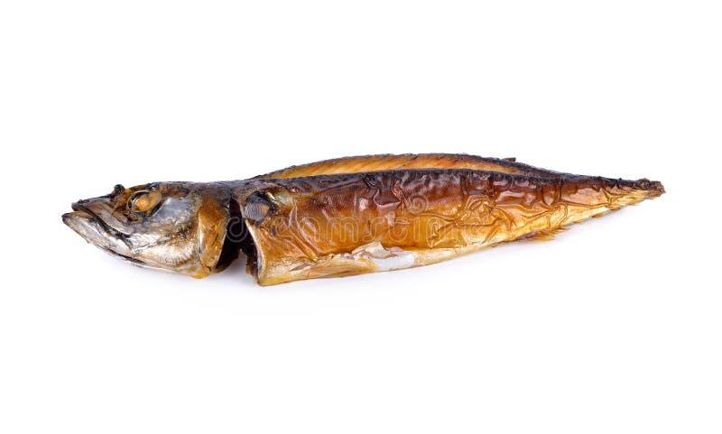 De geroosterde vreedzame vissen van makcerelsaba op witte achtergrond stock afbeeldingen