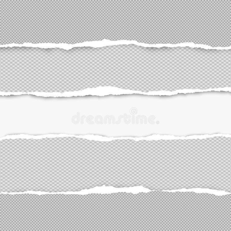De gescheurde geregelde horizontale grijze document stroken voor tekst of bericht zijn op witte achtergrond Vector illustratie stock illustratie