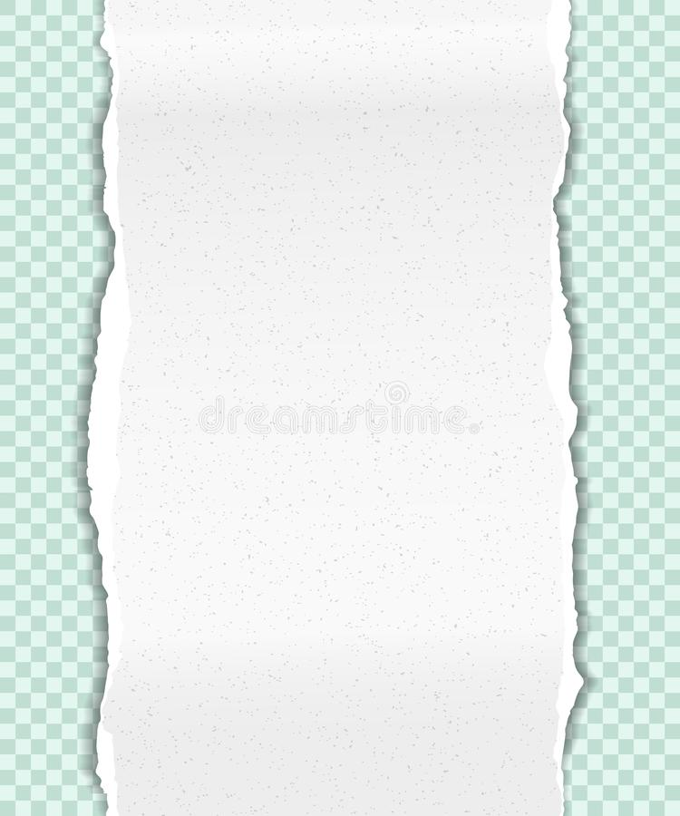 De gescheurde nota, notitieboekje, korrelige verticale document strook plakte op lichtgroene geregelde achtergrond Vector illustr vector illustratie