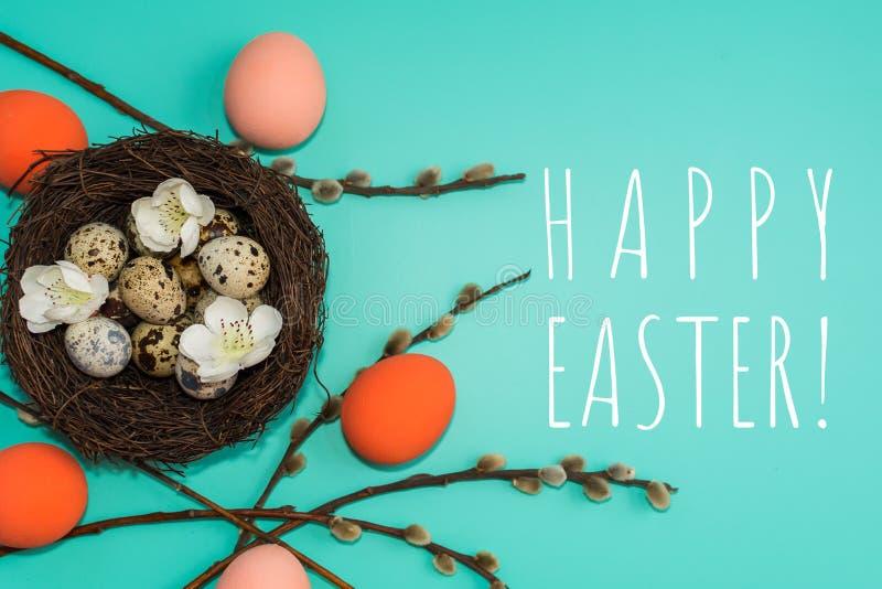 De geschilderde eieren en de kwartelseieren in een nest met wilg vertakken zich op een turkooise achtergrond stock afbeelding