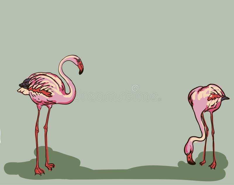 De geschilderde illustratie van de flamingovogel royalty-vrije illustratie