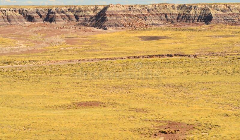 De geschilderde woestijn stock foto