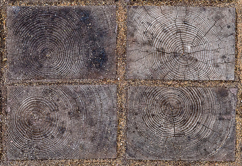 De gesloten tegel van elementen houten eco met natuurlijk patroon van gezaagd hout met jaarringen tussen blokken royalty-vrije stock foto