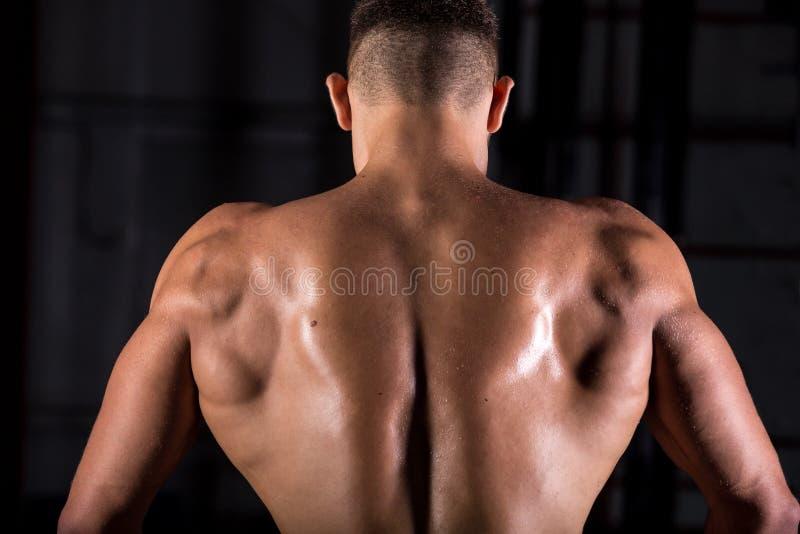 De gespierde rug van de bodybuilderkerel stock afbeelding
