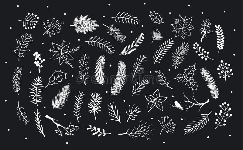 De getrokken inzameling van hand schetste en silhouetteert de wintergebladerte, vertakt zich takjes, bloemen vector illustratie